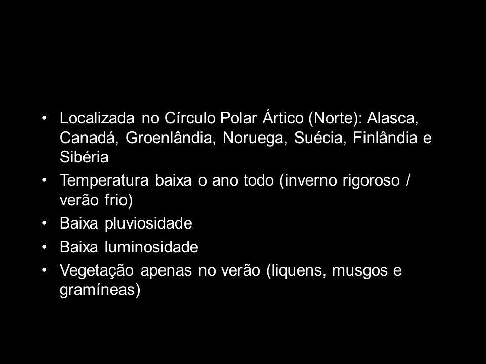 b Localizada no Círculo Polar Ártico (Norte): Alasca, Canadá, Groenlândia, Noruega, Suécia, Finlândia e Sibéria Temperatura baixa o ano todo (inverno