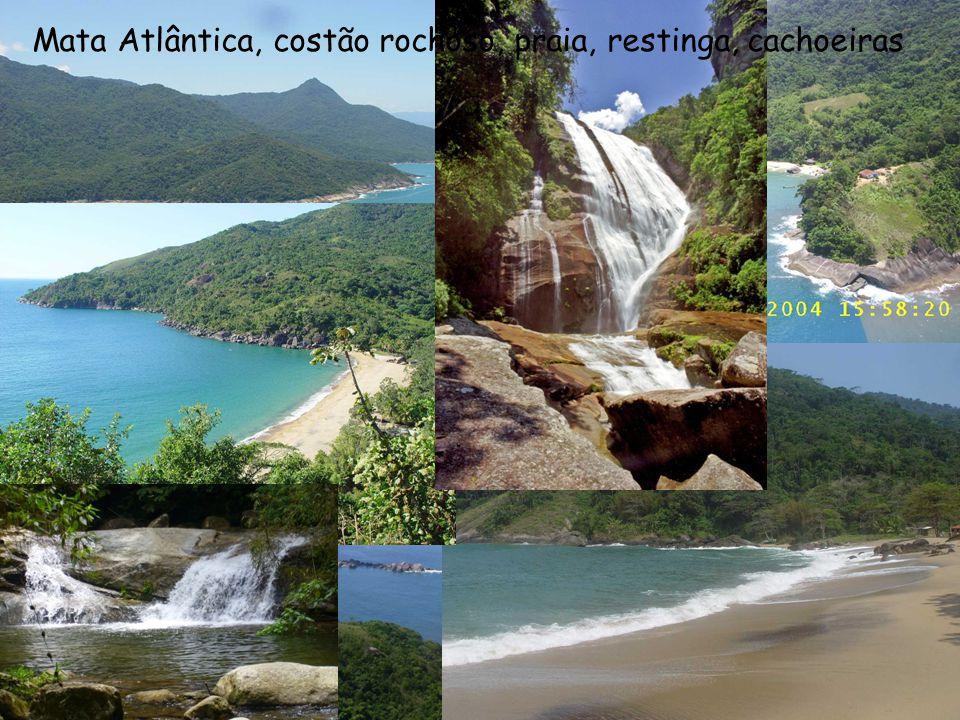 Mata Atlântica, costão rochoso, praia, restinga, cachoeiras
