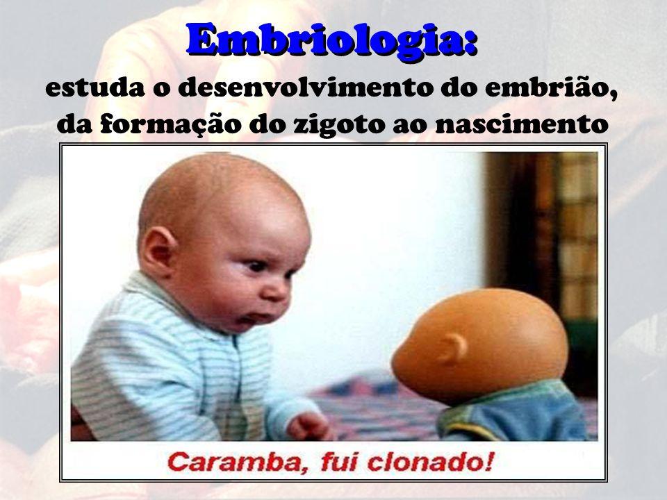 Embriologia: estuda o desenvolvimento do embrião, da formação do zigoto ao nascimento