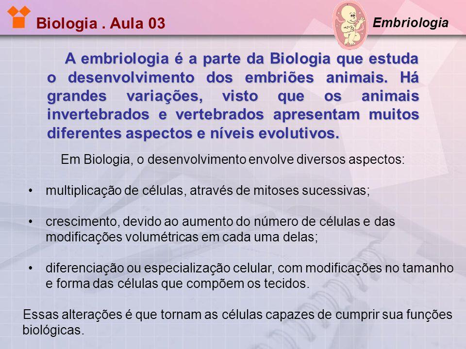 Biologia. Aula 03 Embriologia A embriologia é a parte da Biologia que estuda o desenvolvimento dos embriões animais. Há grandes variações, visto que o