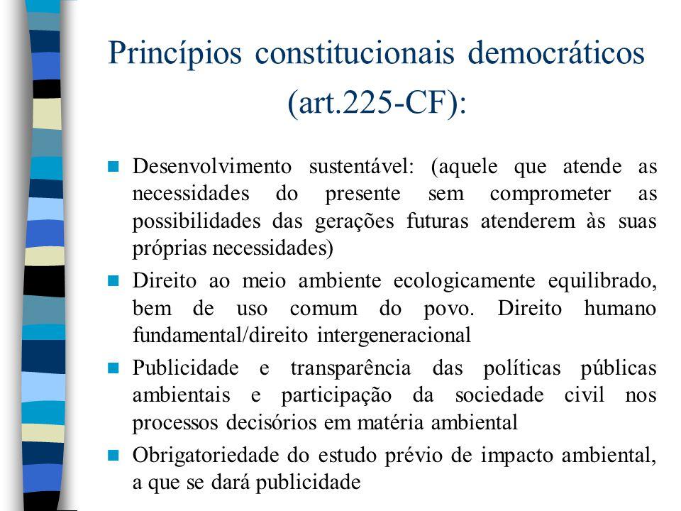 Direito Ambiental: princípios gerais e instrumentos Juliana Santilli, Promotora de Justiça, do MPDFT, e sócia-fundadora do Instituto Socioambiental