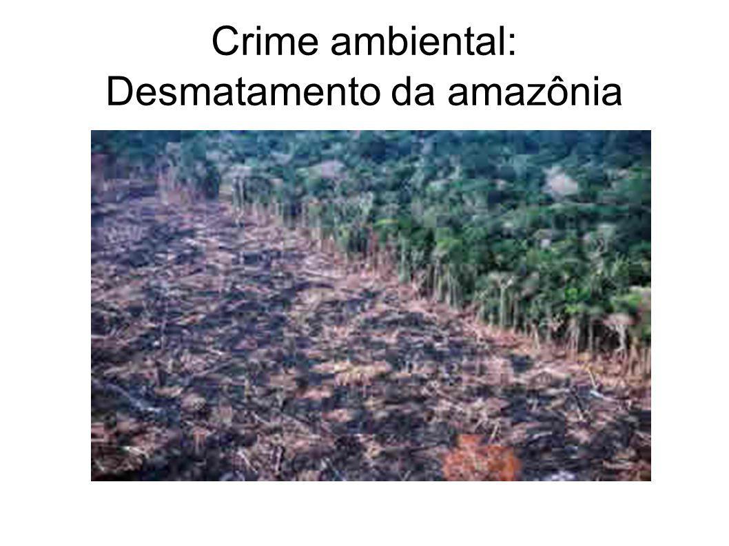 Crime ambiental: Desmatamento da amazônia