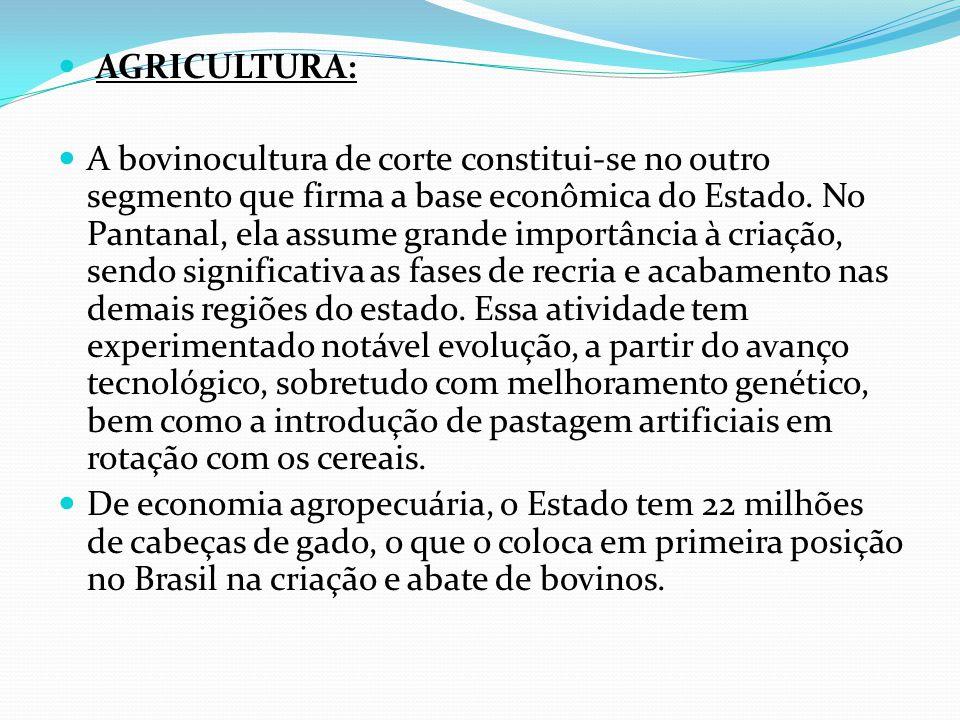 AGRICULTURA: A bovinocultura de corte constitui-se no outro segmento que firma a base econômica do Estado.