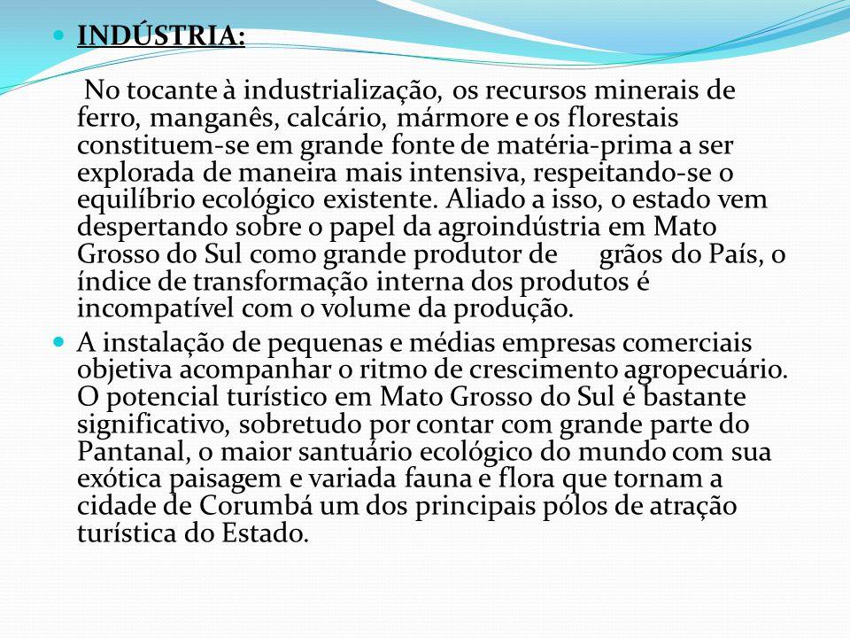 INDÚSTRIA: No tocante à industrialização, os recursos minerais de ferro, manganês, calcário, mármore e os florestais constituem-se em grande fonte de matéria-prima a ser explorada de maneira mais intensiva, respeitando-se o equilíbrio ecológico existente.