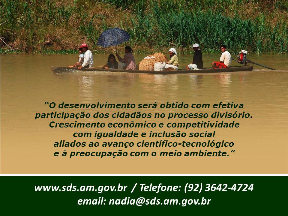"""""""O desenvolvimento será obtido com efetiva participação dos cidadãos no processo divisório. Crescimento econômico e competitividade com igualdade e in"""
