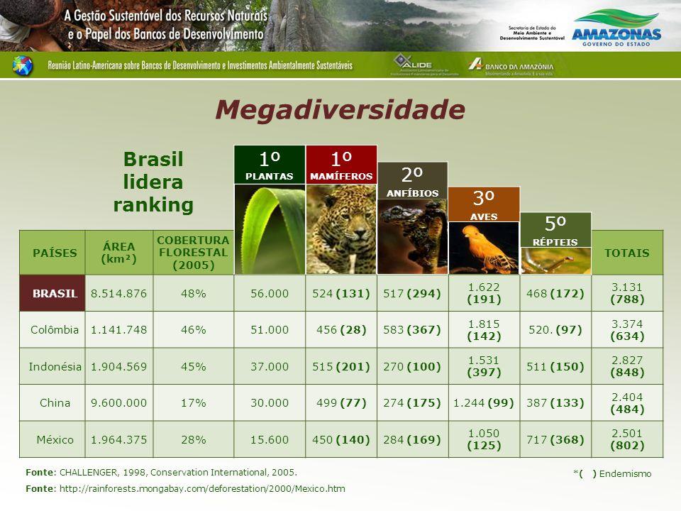 Megadiversidade PAÍSES ÁREA (km²) COBERTURA FLORESTAL (2005) PLANTAS MAMÍFERO S ANFÍBIOSAVESRÉPTEISTOTAIS BRASIL8.514.87648%56.000524 (131)517 (294) 1