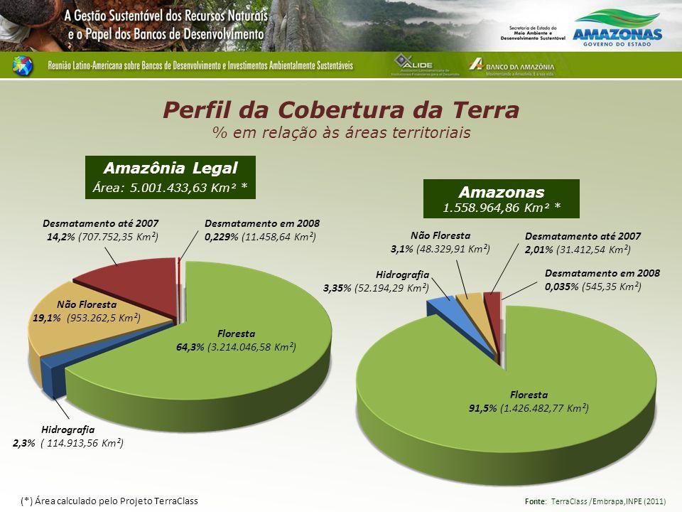 Perfil da Cobertura da Terra % em relação às áreas territoriais Amazonas 1.558.964,86 Km² * Amazônia Legal Área: 5.001.433,63 Km² * Floresta 91,5% (1.426.482,77 Km²) Hidrografia 3,35% (52.194,29 Km²) Não Floresta 3,1% (48.329,91 Km²) Desmatamento até 2007 2,01% (31.412,54 Km²) Desmatamento em 2008 0,035% (545,35 Km²) Fonte: TerraClass /Embrapa,INPE (2011) Floresta 64,3% (3.214.046,58 Km²) Hidrografia 2,3% ( 114.913,56 Km²) Não Floresta 19,1% (953.262,5 Km²) Desmatamento em 2008 0,229% (11.458,64 Km²) Desmatamento até 2007 14,2% (707.752,35 Km²) (*) Área calculado pelo Projeto TerraClass