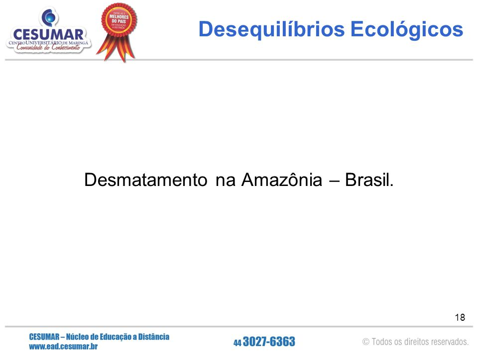 18 Desequilíbrios Ecológicos Desmatamento na Amazônia – Brasil.
