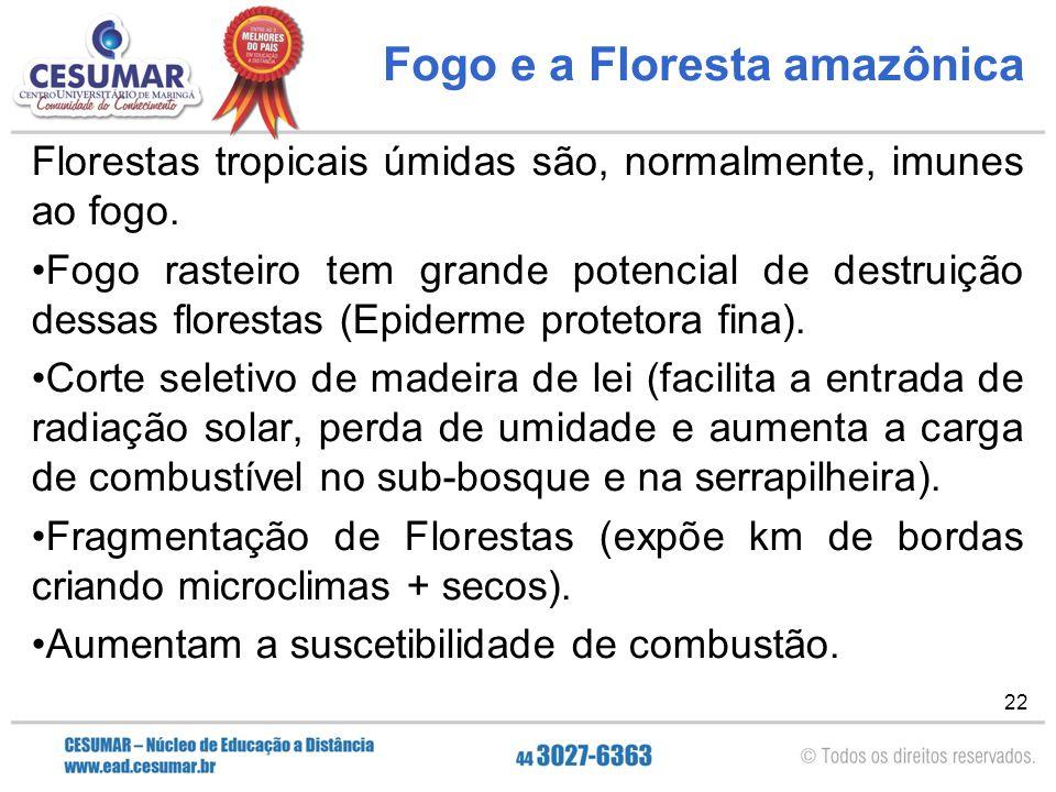 22 Fogo e a Floresta amazônica Florestas tropicais úmidas são, normalmente, imunes ao fogo. Fogo rasteiro tem grande potencial de destruição dessas fl