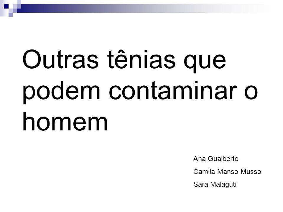 Outras tênias que podem contaminar o homem Ana Gualberto Camila Manso Musso Sara Malaguti
