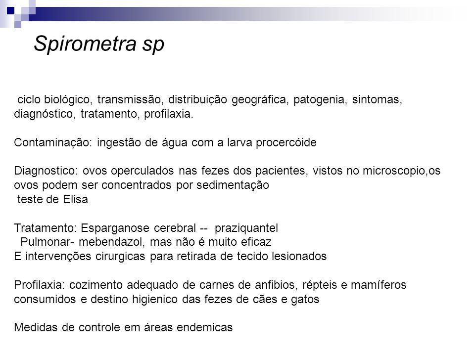 Spirometra sp ciclo biológico, transmissão, distribuição geográfica, patogenia, sintomas, diagnóstico, tratamento, profilaxia.