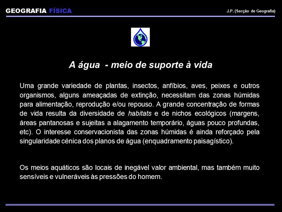 USOS DA ÁGUA Quintela (1981) Utilizações da água segundo as funções ecológicas, serviços prestados aos diferentes sectores económicos e enquanto meios receptores de efluentes: 1.