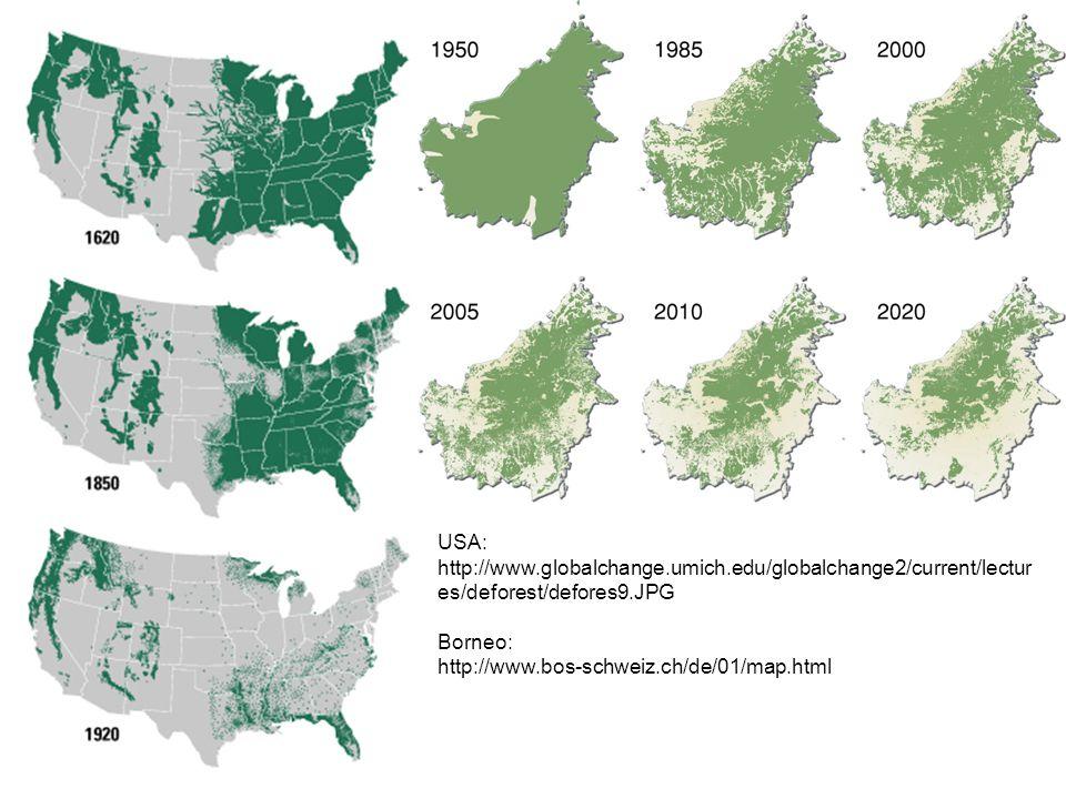 USA: http://www.globalchange.umich.edu/globalchange2/current/lectur es/deforest/defores9.JPG Borneo: http://www.bos-schweiz.ch/de/01/map.html