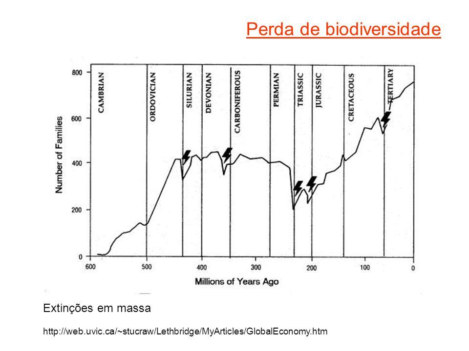 Perda de biodiversidade Extinções em massa http://web.uvic.ca/~stucraw/Lethbridge/MyArticles/GlobalEconomy.htm