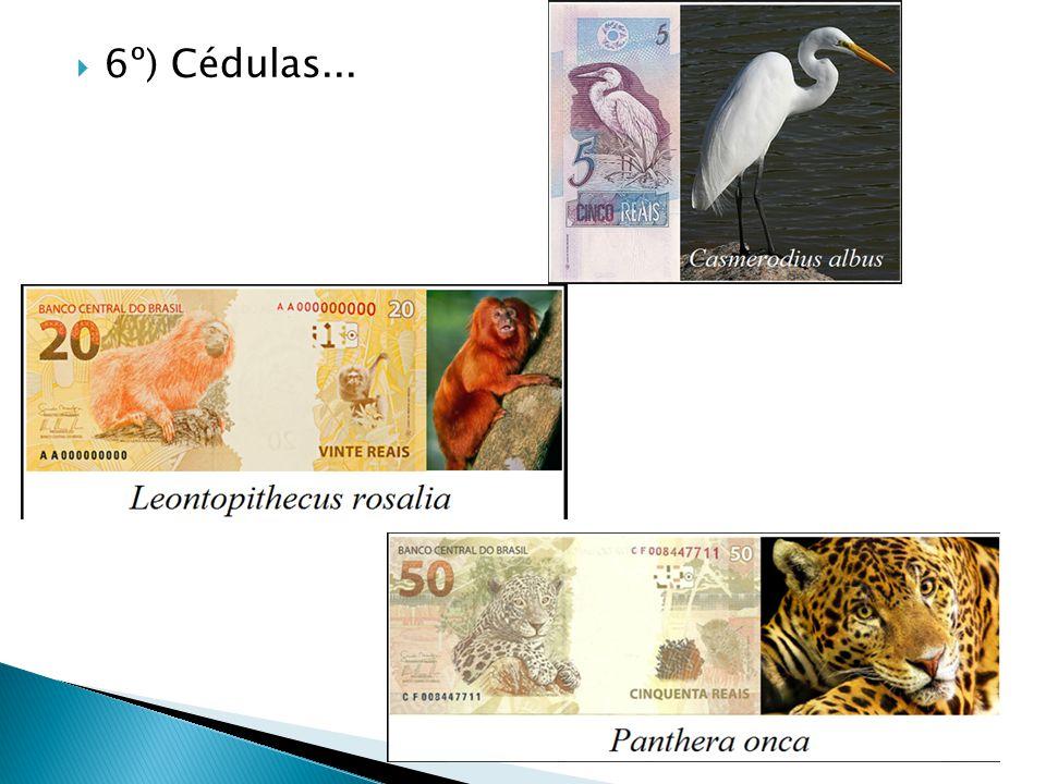 6º) Cédulas...