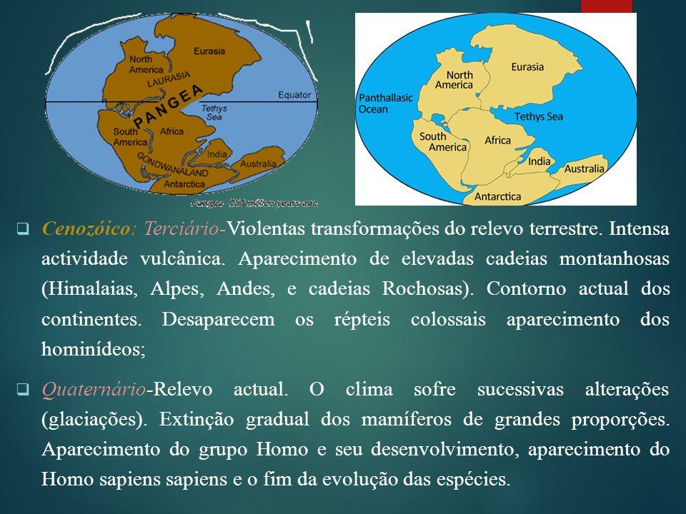  Cenozóico: Terciário-Violentas transformações do relevo terrestre. Intensa actividade vulcânica. Aparecimento de elevadas cadeias montanhosas (Himal