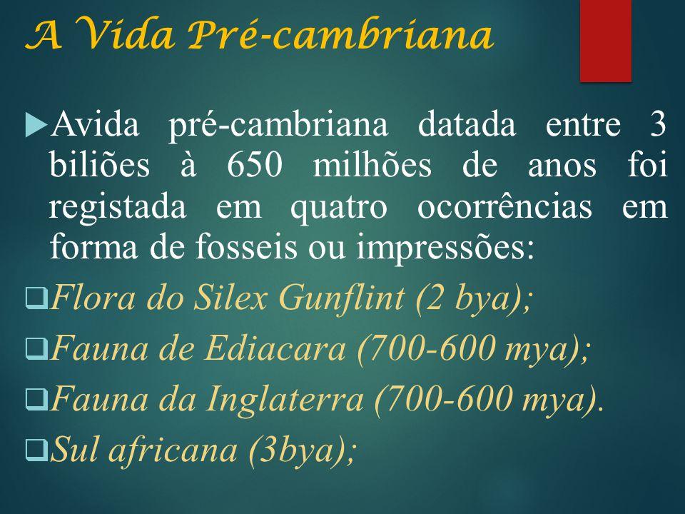 A Vida Pré-cambriana  Avida pré-cambriana datada entre 3 biliões à 650 milhões de anos foi registada em quatro ocorrências em forma de fosseis ou imp