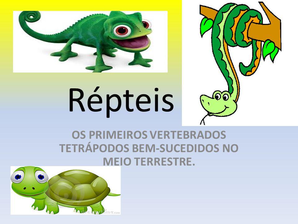 Répteis OS PRIMEIROS VERTEBRADOS TETRÁPODOS BEM-SUCEDIDOS NO MEIO TERRESTRE.