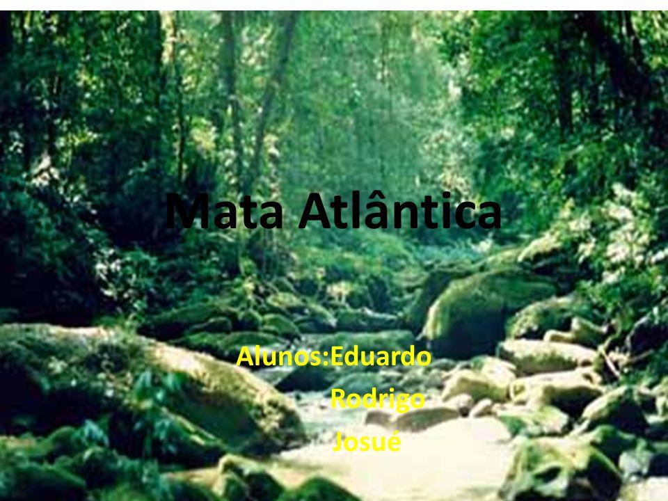 Mata Atlântica Alunos:Eduardo Rodrigo Josué