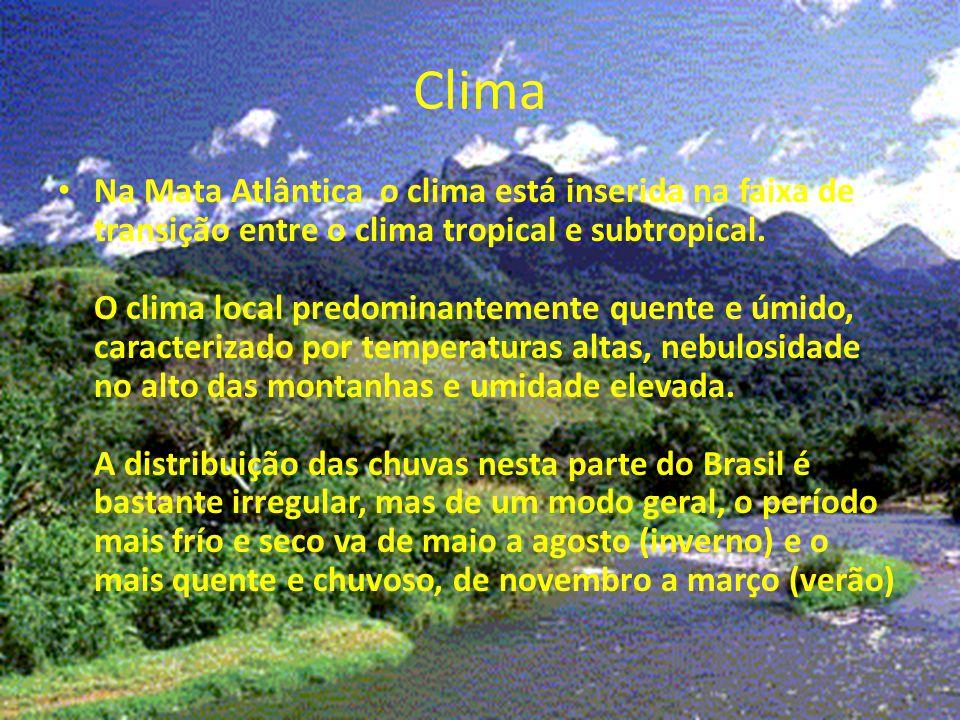 Clima Na Mata Atlântica o clima está inserida na faixa de transição entre o clima tropical e subtropical. O clima local predominantemente quente e úmi