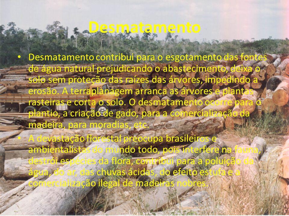 Desmatamento Desmatamento contribui para o esgotamento das fontes de água natural prejudicando o abastecimento, deixa o solo sem proteção das raízes d