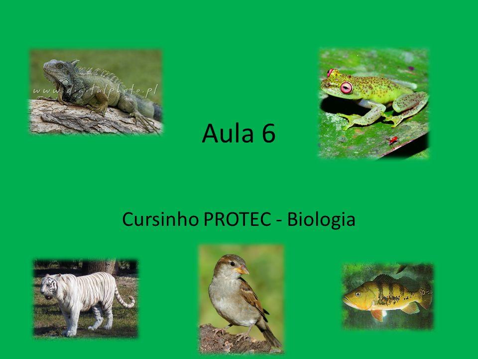 Aula 6 Cursinho PROTEC - Biologia