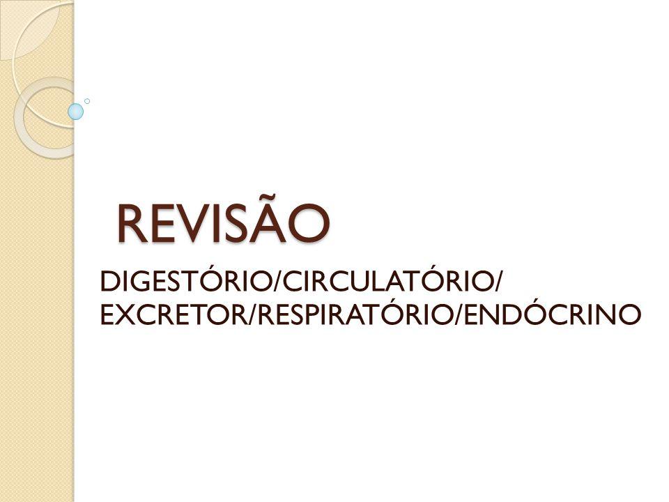 REVISÃO DIGESTÓRIO/CIRCULATÓRIO/ EXCRETOR/RESPIRATÓRIO/ENDÓCRINO