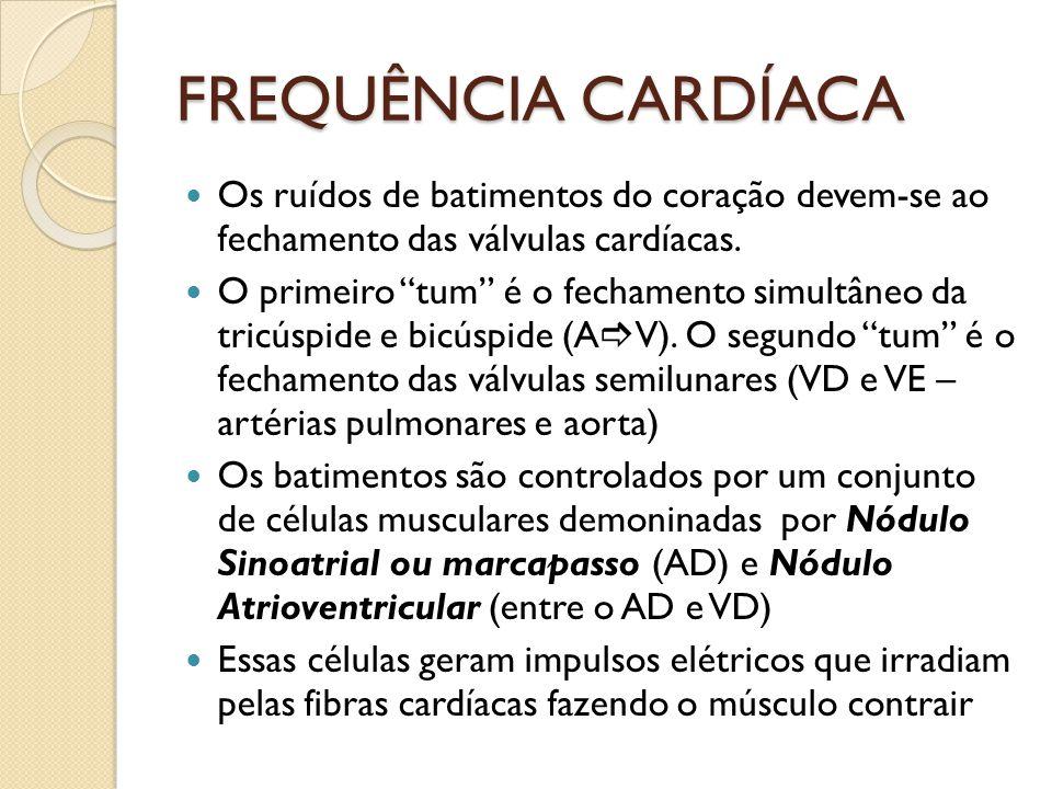 """FREQUÊNCIA CARDÍACA Os ruídos de batimentos do coração devem-se ao fechamento das válvulas cardíacas. O primeiro """"tum"""" é o fechamento simultâneo da tr"""