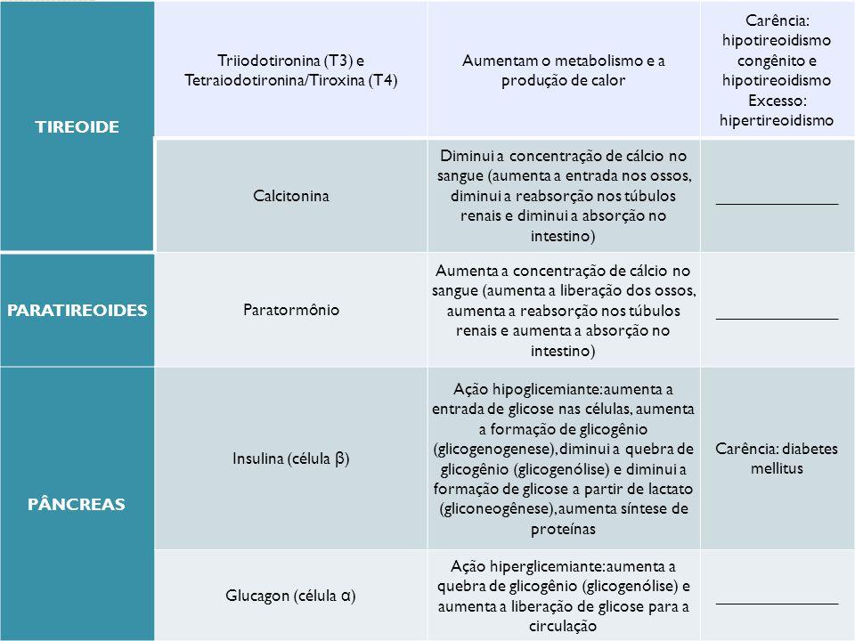 TIREOIDE Triiodotironina (T3) e Tetraiodotironina/Tiroxina (T4) Aumentam o metabolismo e a produção de calor Carência: hipotireoidismo congênito e hip