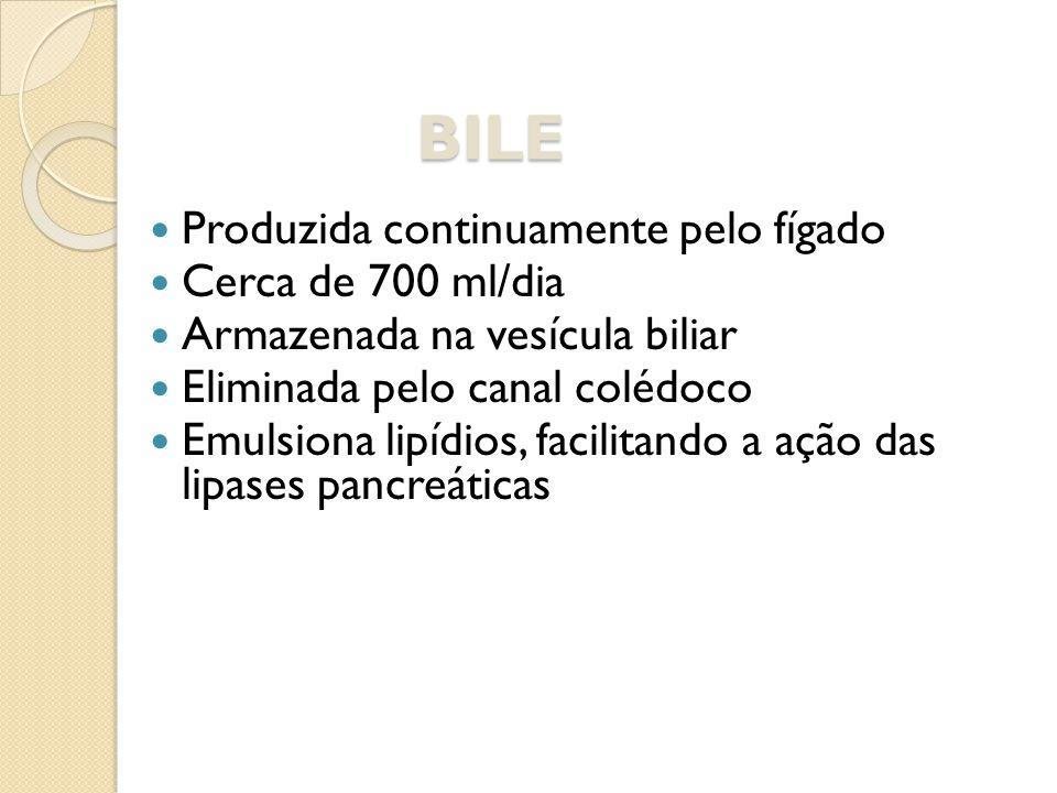 BILE Produzida continuamente pelo fígado Cerca de 700 ml/dia Armazenada na vesícula biliar Eliminada pelo canal colédoco Emulsiona lipídios, facilitan