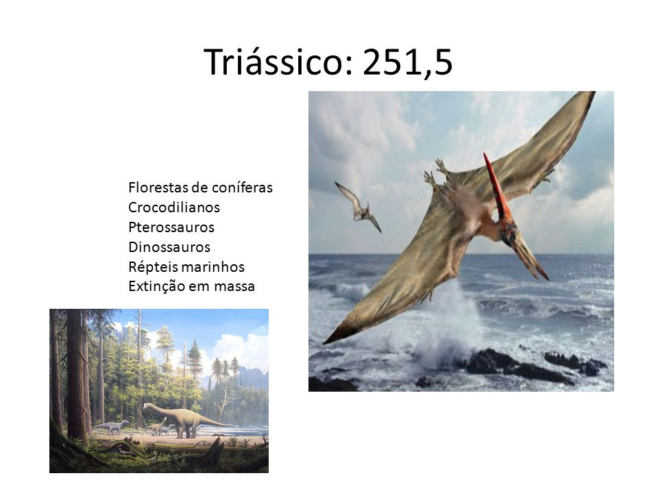 Triássico: 251,5 Florestas de coníferas Crocodilianos Pterossauros Dinossauros Répteis marinhos Extinção em massa
