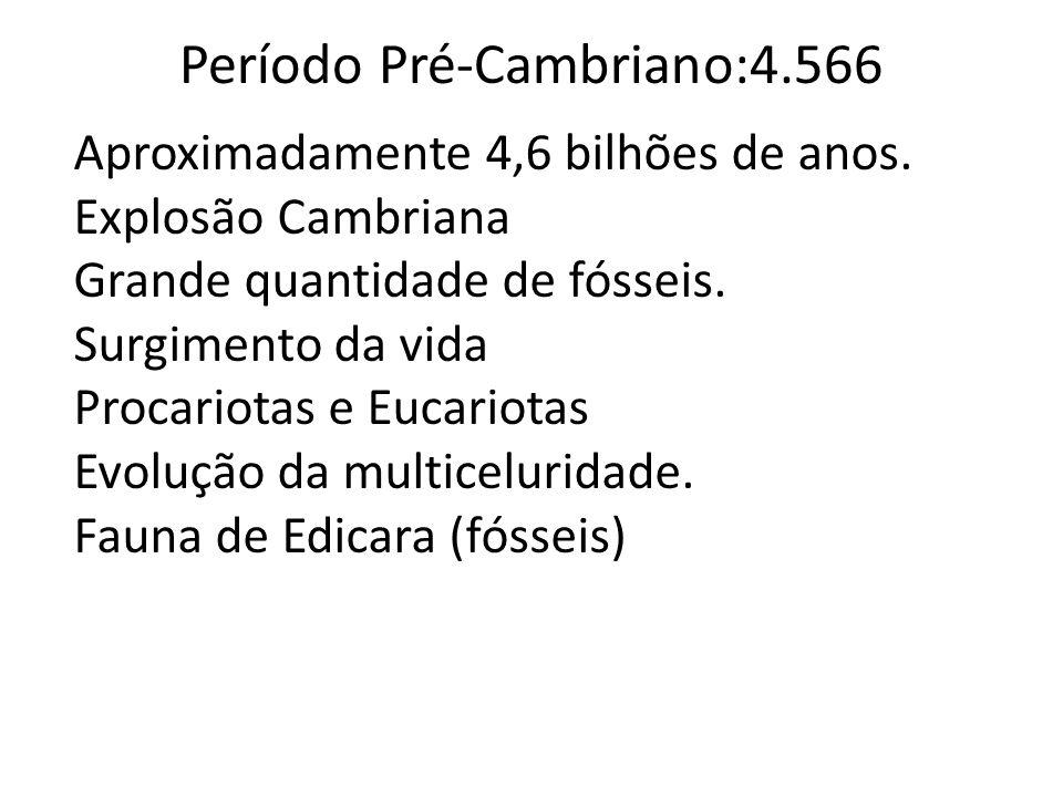 Período Pré-Cambriano:4.566 Aproximadamente 4,6 bilhões de anos.