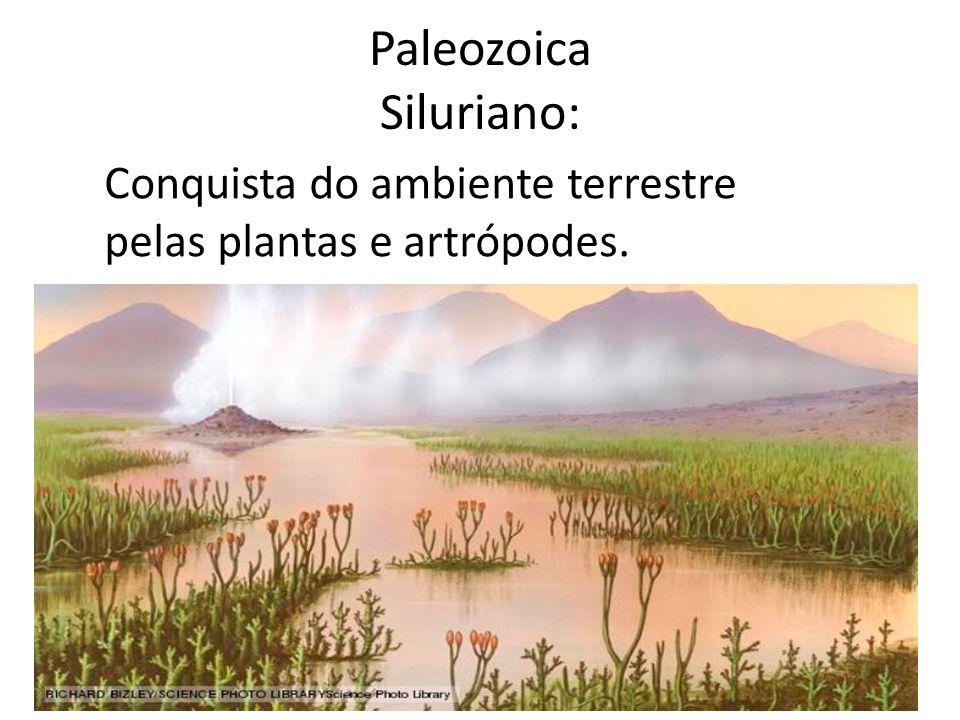 Paleozoica:Devoniano 417 Peixes com mandíbula Plantas com sementes Primeiros tetrápodes Grande extinção