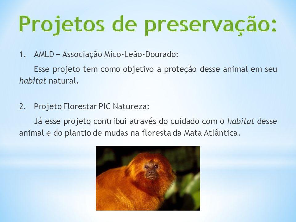 1.AMLD – Associação Mico-Leão-Dourado: Esse projeto tem como objetivo a proteção desse animal em seu habitat natural. 2.Projeto Florestar PIC Natureza