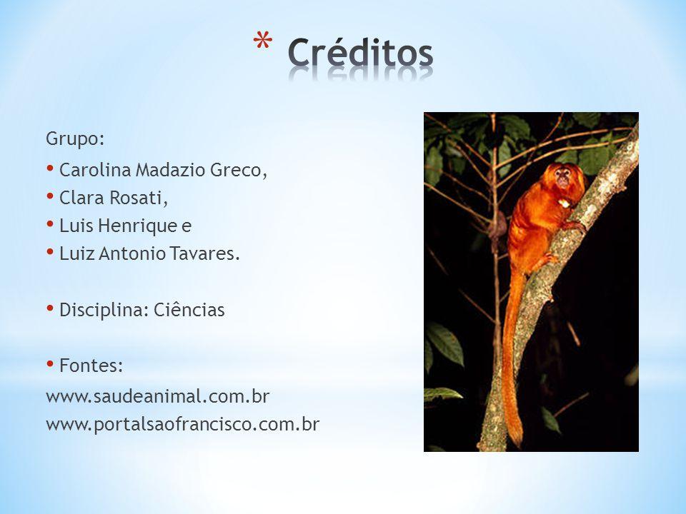 Grupo: Carolina Madazio Greco, Clara Rosati, Luis Henrique e Luiz Antonio Tavares. Disciplina: Ciências Fontes: www.saudeanimal.com.br www.portalsaofr