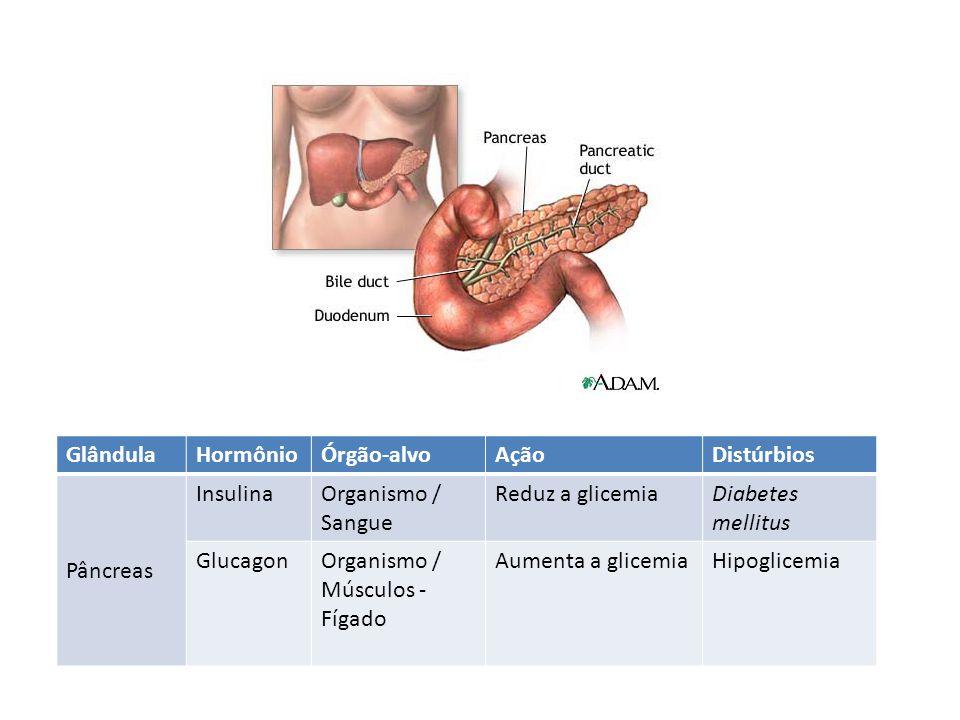 GlândulaHormônioÓrgão-alvoAçãoDistúrbios Pâncreas InsulinaOrganismo / Sangue Reduz a glicemiaDiabetes mellitus GlucagonOrganismo / Músculos - Fígado A