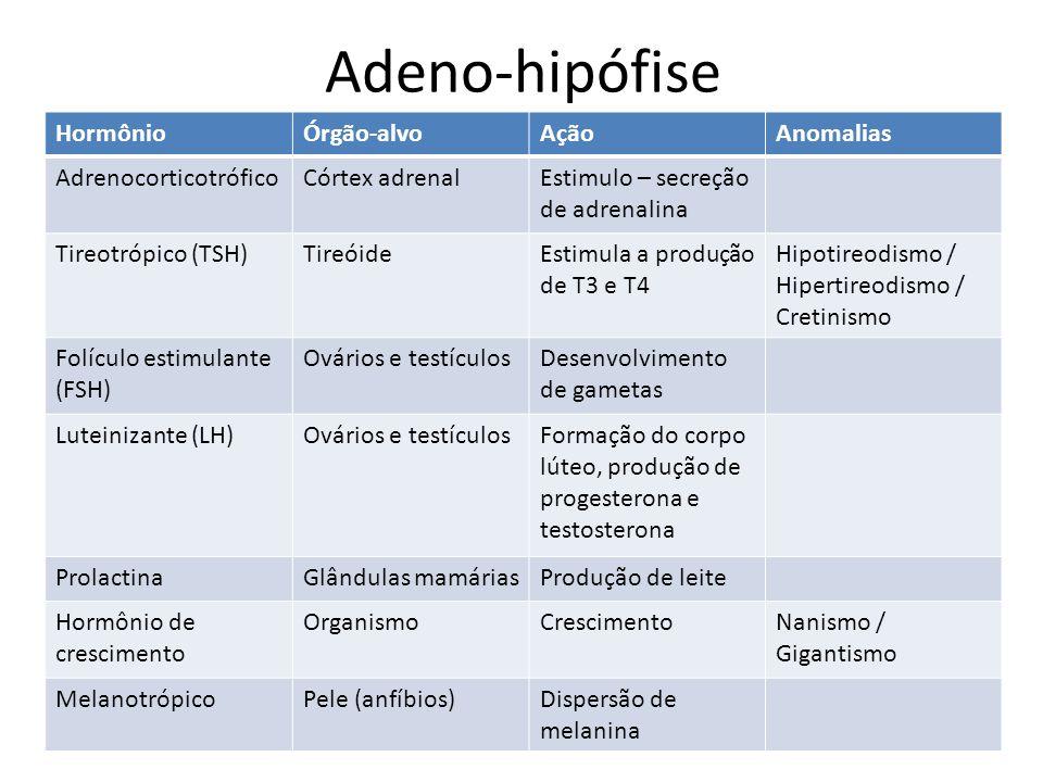 HormônioÓrgão-alvoAçãoAnomalias AdrenocorticotróficoCórtex adrenalEstimulo – secreção de adrenalina Tireotrópico (TSH)TireóideEstimula a produção de T