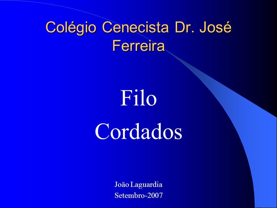 Colégio Cenecista Dr. José Ferreira Filo Cordados João Laguardia Setembro-2007