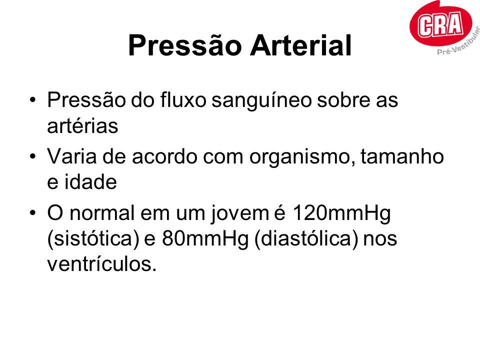 Pressão Arterial Pressão do fluxo sanguíneo sobre as artérias Varia de acordo com organismo, tamanho e idade O normal em um jovem é 120mmHg (sistótica