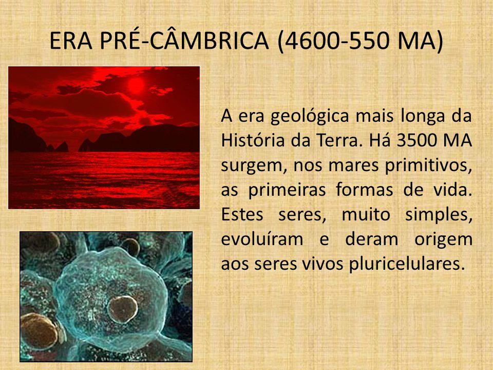 ERA PALEOZÓICA (550-250 MA) Desenvolve-se uma grande diversidade de fauna e flora.