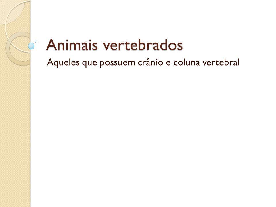 Animais vertebrados Aqueles que possuem crânio e coluna vertebral
