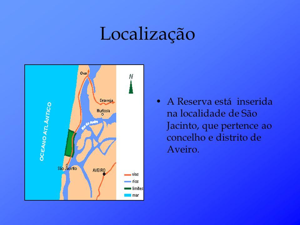 A Reserva está inserida na localidade de São Jacinto, que pertence ao concelho e distrito de Aveiro.