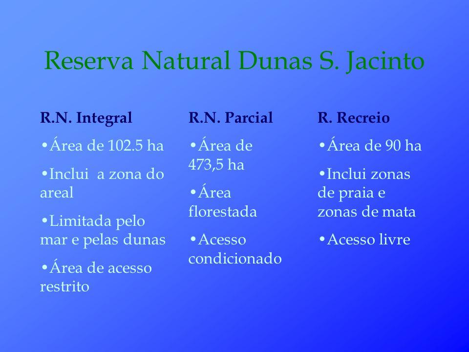 Reserva Natural Dunas S.Jacinto R.N.