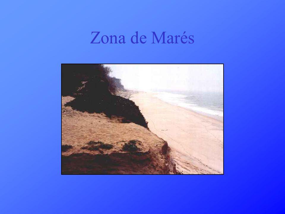Zona de Marés
