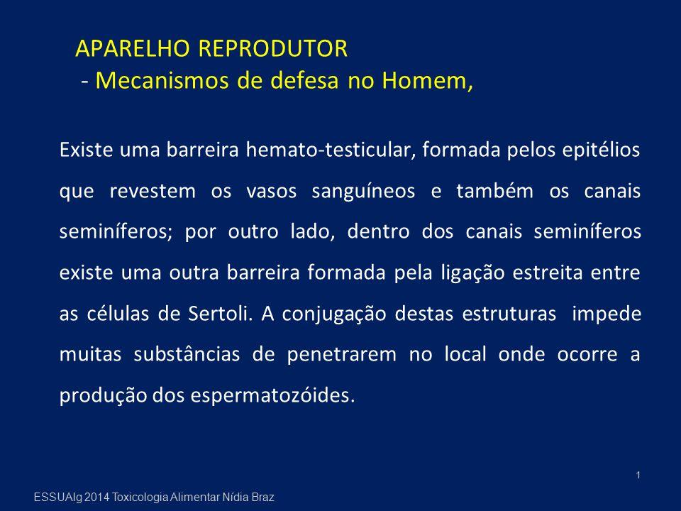 APARELHO REPRODUTOR - Mecanismos de defesa no Homem, Existe uma barreira hemato-testicular, formada pelos epitélios que revestem os vasos sanguíneos e também os canais seminíferos; por outro lado, dentro dos canais seminíferos existe uma outra barreira formada pela ligação estreita entre as células de Sertoli.