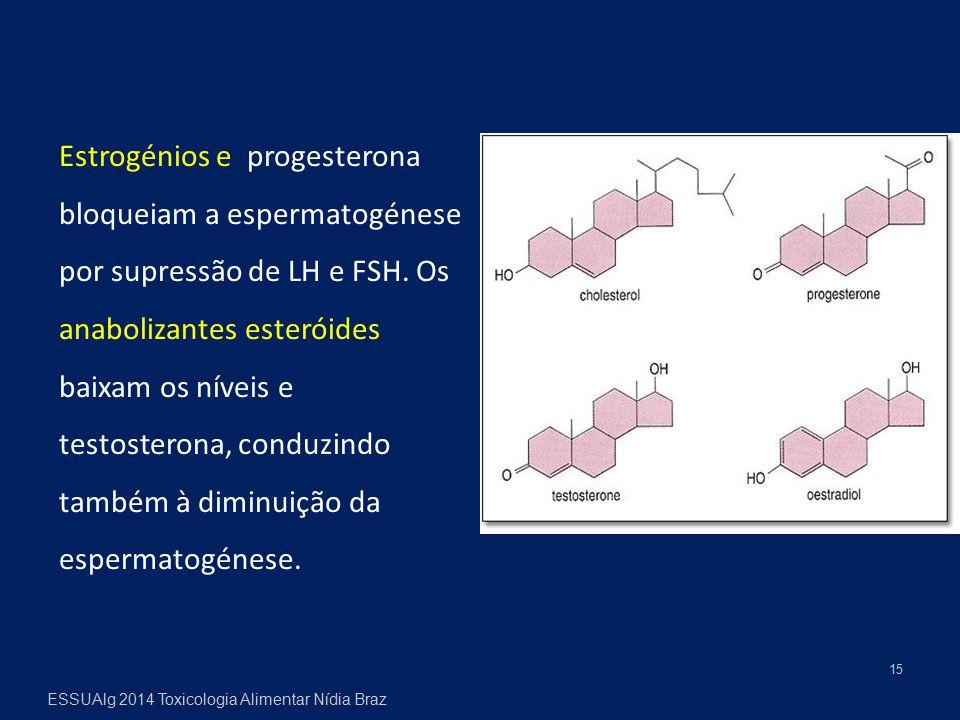 15 Estrogénios e progesterona bloqueiam a espermatogénese por supressão de LH e FSH. Os anabolizantes esteróides baixam os níveis e testosterona, cond
