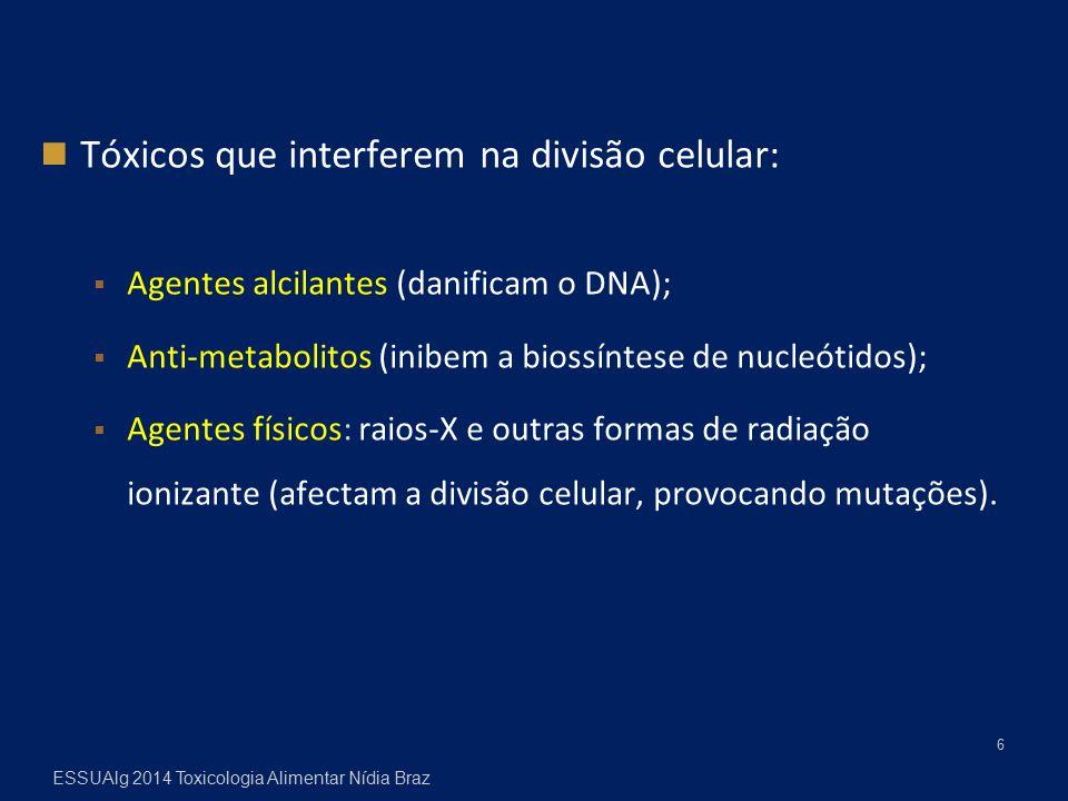 Tóxicos que interferem na divisão celular:  Agentes alcilantes (danificam o DNA);  Anti-metabolitos (inibem a biossíntese de nucleótidos);  Agentes físicos: raios-X e outras formas de radiação ionizante (afectam a divisão celular, provocando mutações).