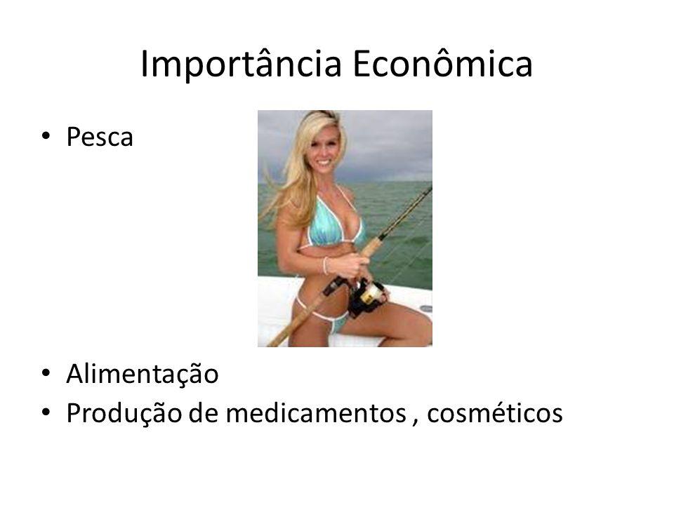 Importância Econômica Pesca Alimentação Produção de medicamentos, cosméticos