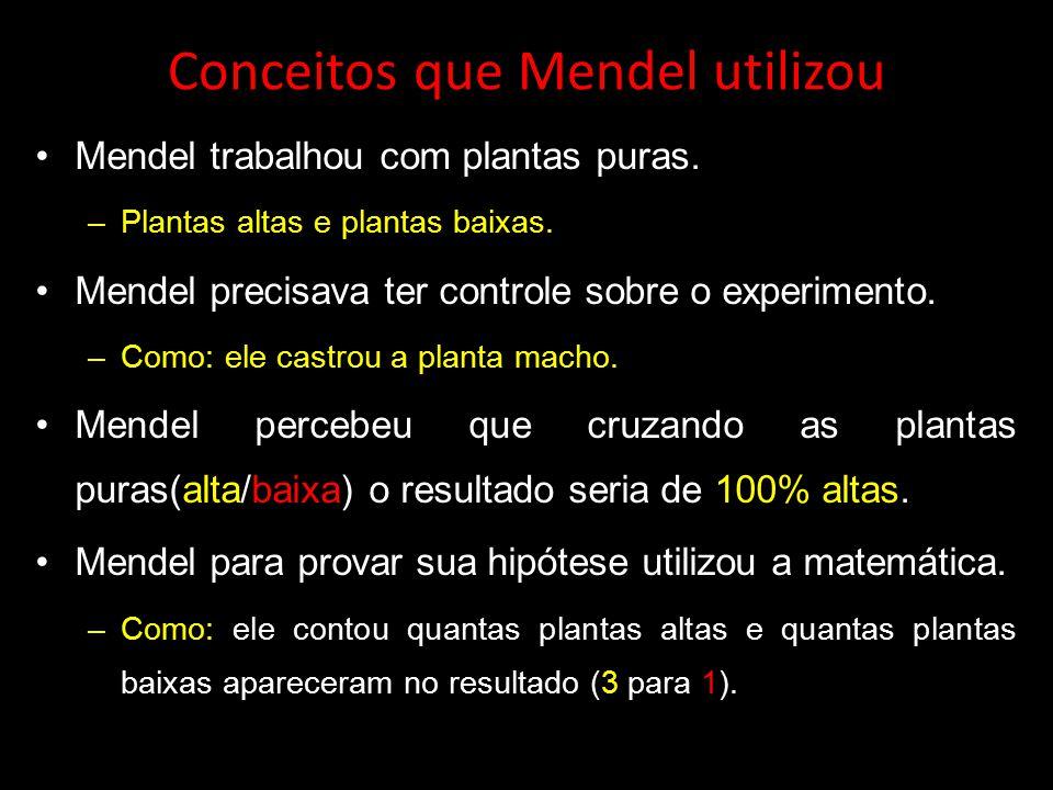 Conceitos que Mendel utilizou Mendel trabalhou com plantas puras. –Plantas altas e plantas baixas. Mendel precisava ter controle sobre o experimento.