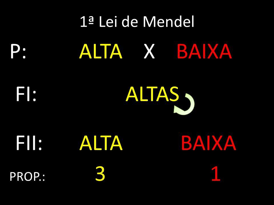 1ª Lei de Mendel P: ALTA X BAIXA FI: ALTAS FII: ALTA BAIXA PROP.: 3 1